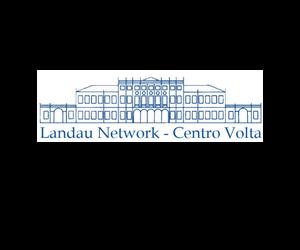 Landau Network